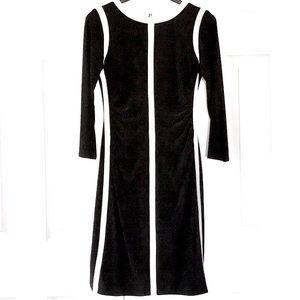 Ralph Lauren Green Label Racing Heavy Lined Dress